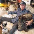 steve greig and his pets